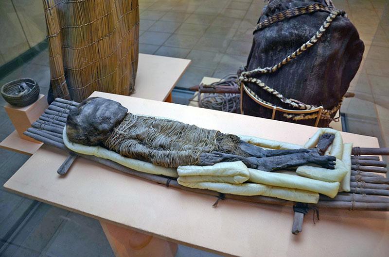 Múmia no Museu Arqueológico de Azapa.