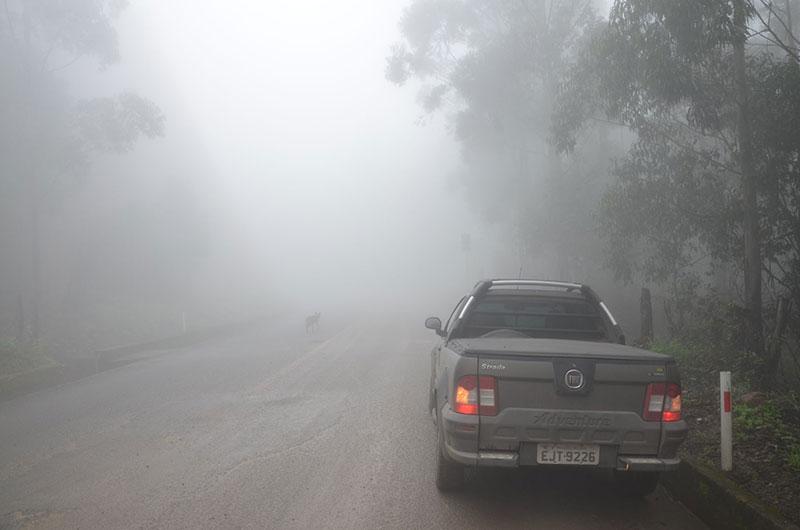 Neblina durante o dia... imagine a noite