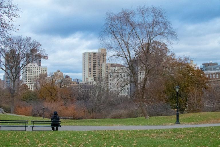 Frio no Central Park